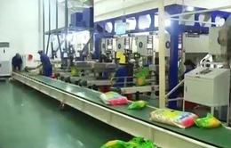 Vướng mắc nguyên liệu và dòng tiền khi tăng sản xuất