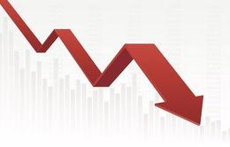 Báo cáo tài chính Quý I/2020: Nhiều công ty tài chính báo lỗ