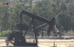 """Giá dầu thô WTI giảm xuống mức âm - """"Thảm họa"""" ngành công nghiệp dầu lửa Mỹ"""