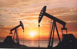 Ngành năng lượng Mỹ trước hiệu ứng domino phá sản