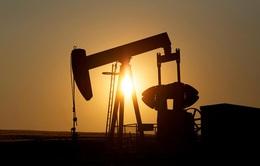 Tổng thống Donald Trump: Không để ngành dầu khí Mỹ sụp đổ