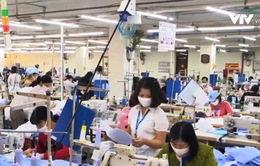 ILO: Khoảng 10 triệu lao động bị ảnh hưởng trong Quý II vì dịch COVID-19