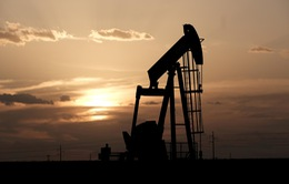 Giá dầu Brent giảm thấp kỷ lục, xuống dưới 19 USD/thùng