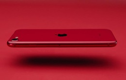 """iPhone SE mới bán tốt vượt mong đợi nhưng không thể """"cứu"""" nổi Apple"""