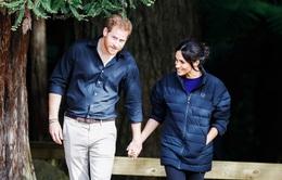 Giữa dịch COVID-19, vợ chồng hoàng tử Harry không tiếp người lạ