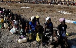 HĐBA Liên Hợp Quốc nhóm họp về bảo vệ người dân bị nạn đói do xung đột