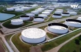 Bộ Tài chính Mỹ cân nhắc cứu trợ các công ty dầu khí