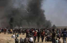 Hội đồng Bảo an Liên Hợp Quốc họp về tình hình Trung Đông