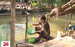 Còn nhiều vùng nông thôn ở Hậu Giang chưa có nước sạch