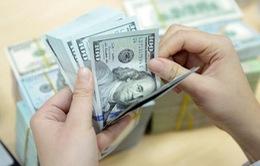 Tỷ giá trung tâm sáng nay (24/4) tăng 11 đồng