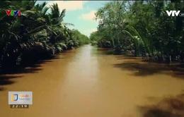 Giải bài toán nước ngọt cho người dân ĐBSCL hiện tại vì nguồn tài nguyên nước tương lai