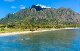 Dịch COVID-19, Hawaii chi trả 25.000 USD để đưa du khách rời quần đảo