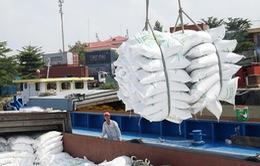 Thanh tra hoạt động quản lý nhà nước về xuất khẩu gạo