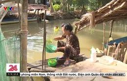 Nhiều vùng nông thôn Hậu Giang còn mong lắm nước sạch về