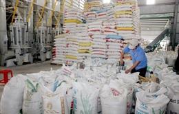 Thêm 38.000 tấn gạo được xuất khẩu trong hạn ngạch tháng 4