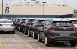 """Hàng loạt xe Hyundai bị """"đắp chiếu"""" tại nhiều cảng ở Mỹ"""