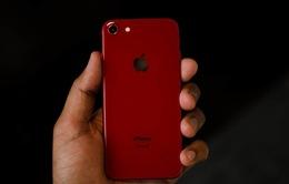iPhone SE 2020 vượt xa tất cả smartphone Android