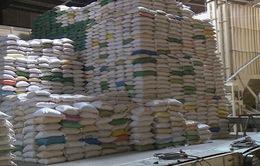 22 doanh nghiệp mở tờ khai xuất khẩu gạo nhưng không có giá trị làm thủ tục hải quan