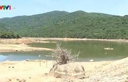 Nắng nóng kéo dài, hàng loạt hồ chứa ở Quảng Ngãi cạn kiệt nước