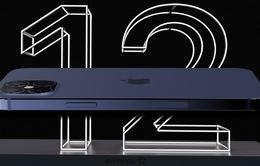 Lo ế, Apple cắt giảm đơn đặt hàng iPhone 12 5G