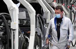 Volkswagen mở lại nhà máy sản xuất ô tô lớn nhất châu Âu sau thời gian dài chống dịch