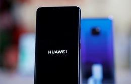 Huawei sẽ cần đến... 300 năm để bắt kịp Android và iOS