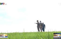 Bộ đội Biên phòng bám biên giới phòng chống dịch Covid-19