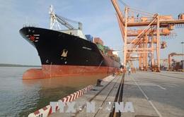 Hải Phòng có 49 bến cảng thuộc hệ thống cảng biển Việt Nam