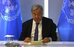 Hội đồng Bảo an LHQ thảo luận chủ đề Thanh niên, Hòa bình, An ninh