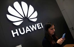 Huawei thừa nhận cần 300 năm để vượt Android và iOS