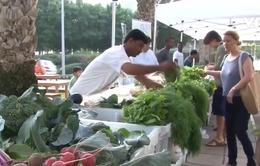 Các tiểu vương quốc Arab thống nhất đảm bảo an ninh lương thực trong thời COVID-19