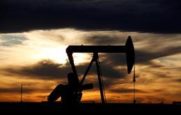 Vì sao Mỹ nới lỏng giãn cách xã hội nhưng giá dầu vẫn giảm?