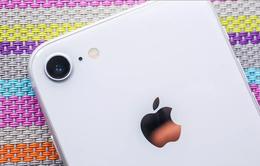 Kiểm chứng độ hao pin của iPhone SE 2020 với các đời iPhone trước đó