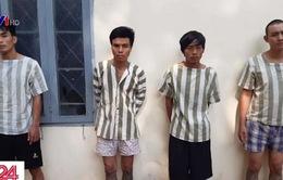 Đồng Nai: Triệt phá băng nhóm trộm liên tỉnh