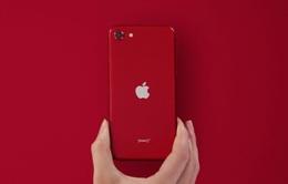"""""""Sát thủ"""" của iPhone SE 2020 sắp ra mắt"""