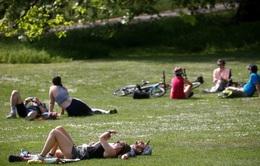 2020 được dự báo là năm nóng kỷ lục