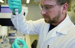 Quá trình tìm vaccine COVID-19 tiến triển tích cực