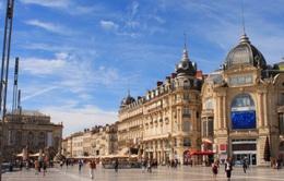 Pháp thay đổi kỳ thi xét tuyển vào đại học do dịch COVID-19