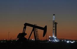 Nga sẵn sàng giảm sản lượng dầu khai thác