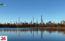 Môi trường ở New York (Mỹ) được cải thiện nhờ biện pháp giãn cách xã hội