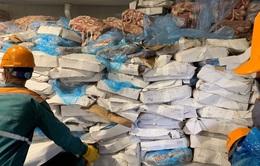 Hải Dương: Hơn 72 tấn lòng lợn bốc mùi sắp bị tuồn ra thị trường