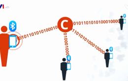 Nỗi lo về bảo mật thông tin thời COVID-19
