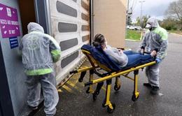 Hơn 10.000 người tử vong vì COVID-19 tại Pháp