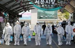 Hàn Quốc mở điều tra 51 bệnh nhân COVID-19 tái dương tính sau hồi phục