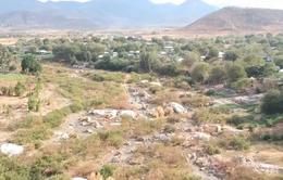 Hàng chục nghìn ha diện tích canh tác có nguy cơ thiếu nước