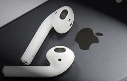 Apple có thể đã bắt đầu lắp ráp tai nghe AirPods tại Việt Nam