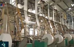 TP.HCM: Doanh nghiệp tận dụng chính sách hỗ trợ khôi phục sản xuất kinh doanh