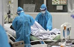 Bệnh nhân 91 phi công xẹp thùy phổi dưới, hội chẩn ba miền bàn phương án ghép phổi