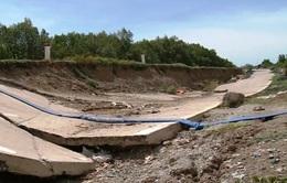 Đê biển Tây tỉnh Cà Mau xuất hiện nhiều điểm sụt lún