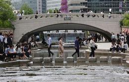 Hàn Quốc ghi nhận số ca nhiễm mới tăng trở lại ở mức hai con số